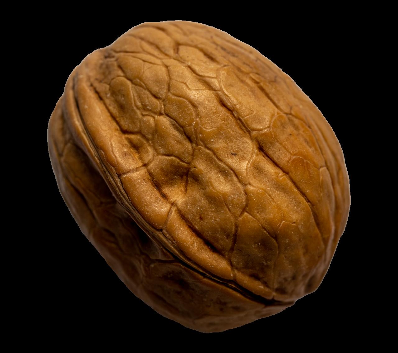 Walnut transparent background png