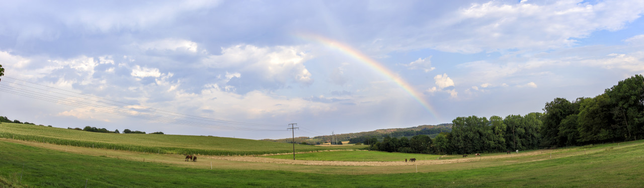 Rainbow over a rural landscape with horses and fields in Germany near Velbert Langenberg, Neviges in North Rhine Westphalia