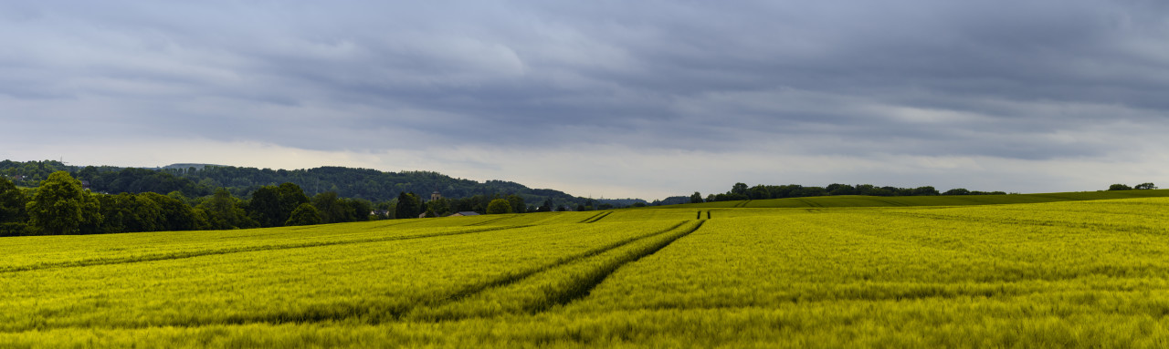 fields rural landscape in germany, nrw