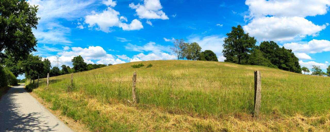 Fields in Summer - North Rhine Westphalia by Germany