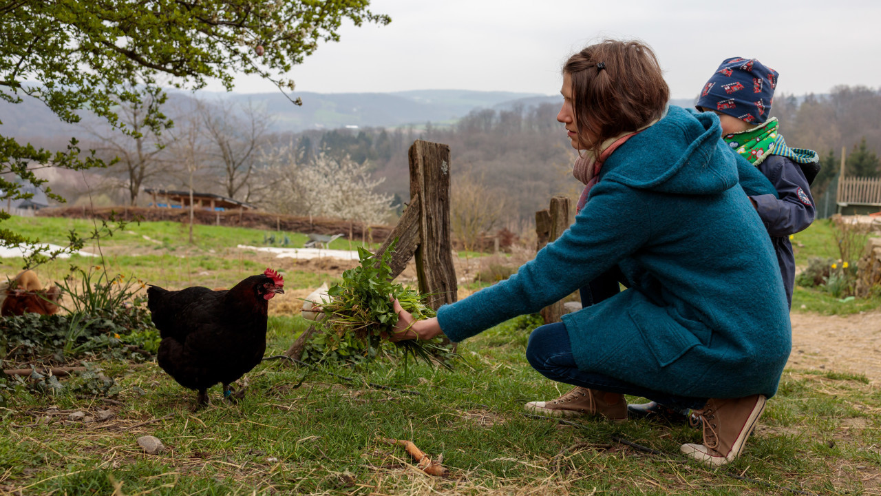 Young woman in blue coat feeds a black hen
