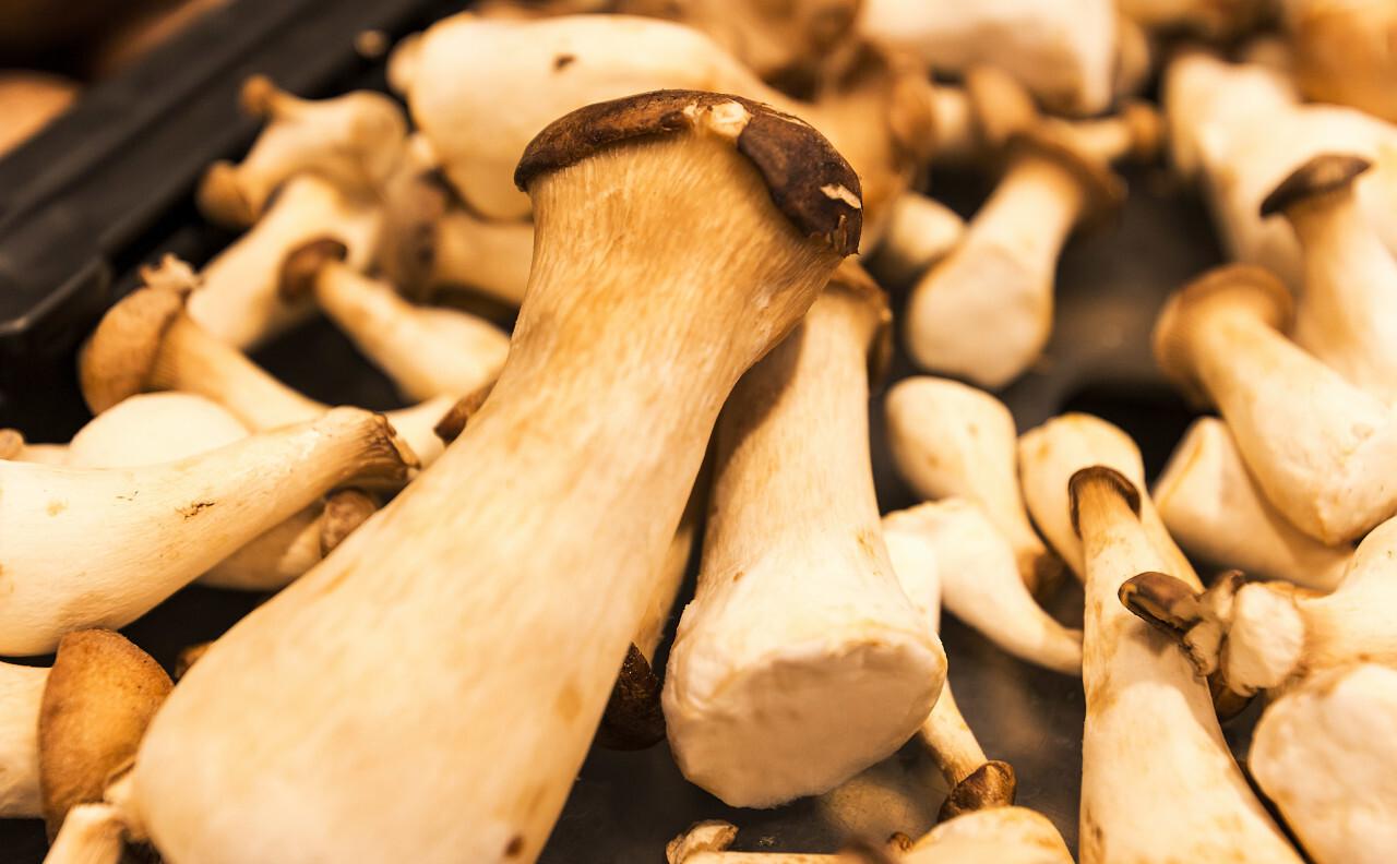 fresh trumpet royale mushrooms