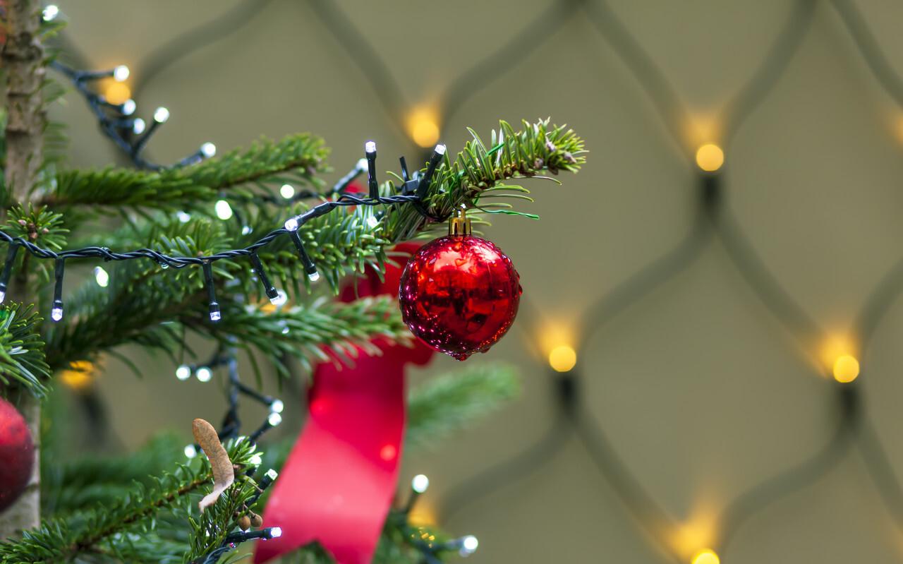 Christmas ball on christmas tree
