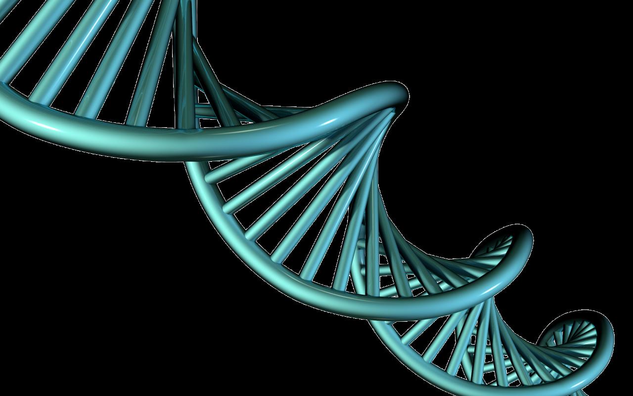 DNA PNG