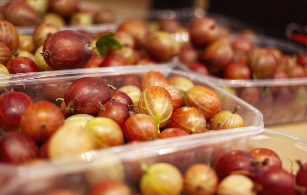 red gooseberries fresh from the market