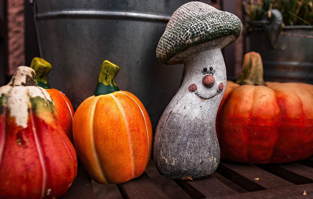 pumpkins and mushroom autumn decoration