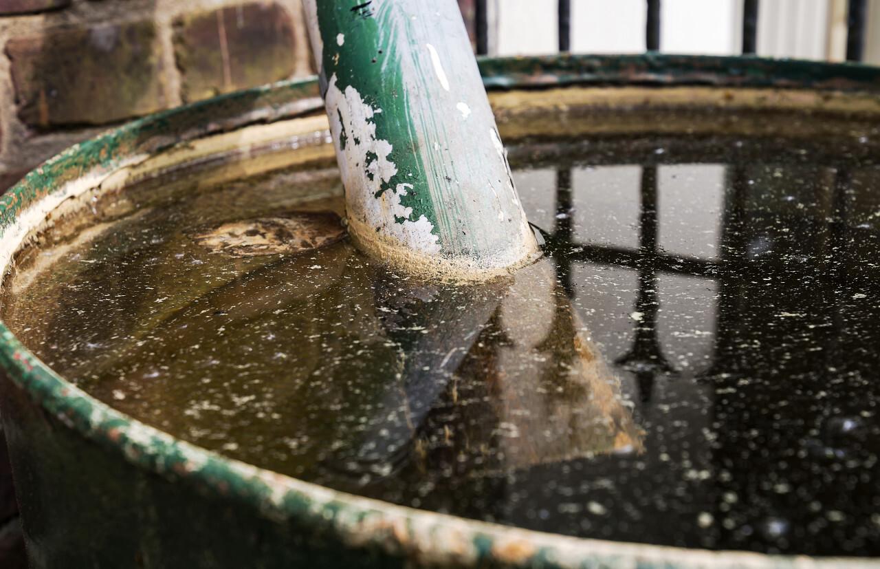 old green rain barrel