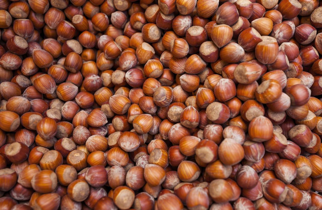 brown dried hazelnuts background - nut background chocolate cream ingrediance