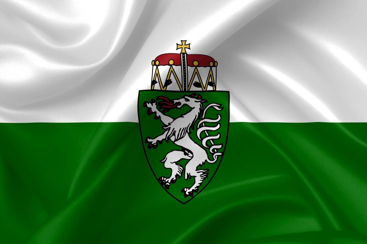 flag of styria country symbol illustration