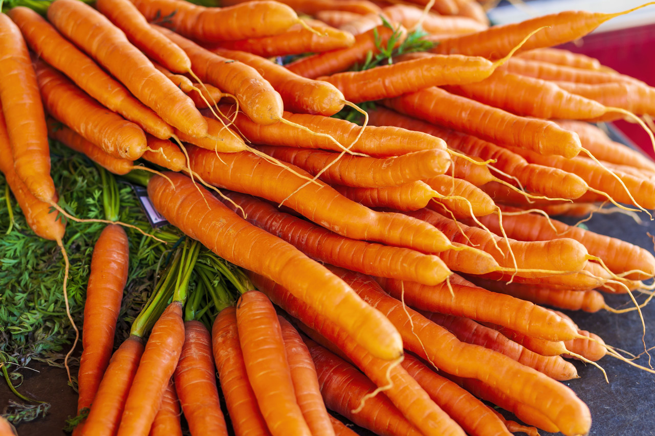 fresh carrots from a market somewhere in germany