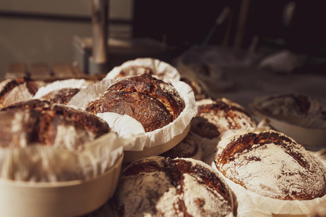 freshly baked traditional german bread