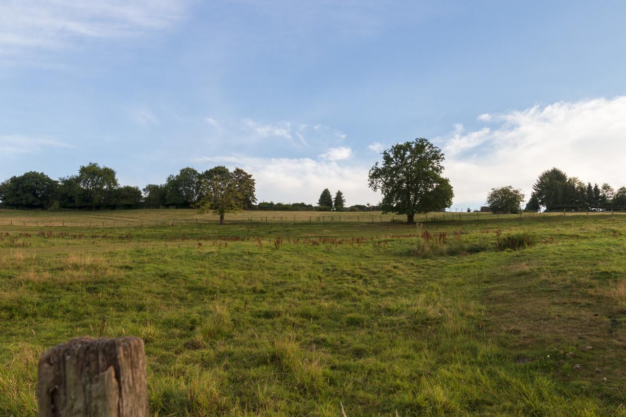 fields in remscheid