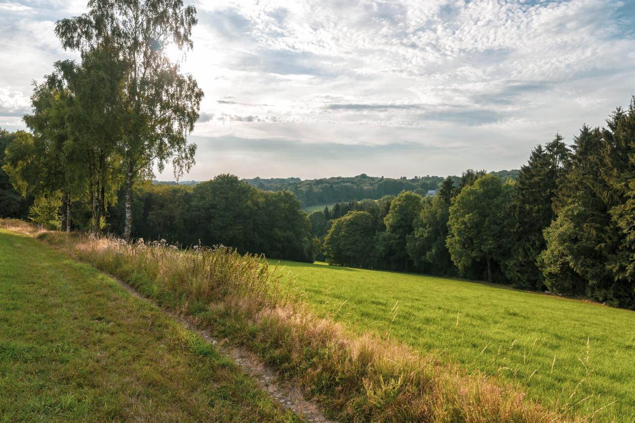 rural german landscape