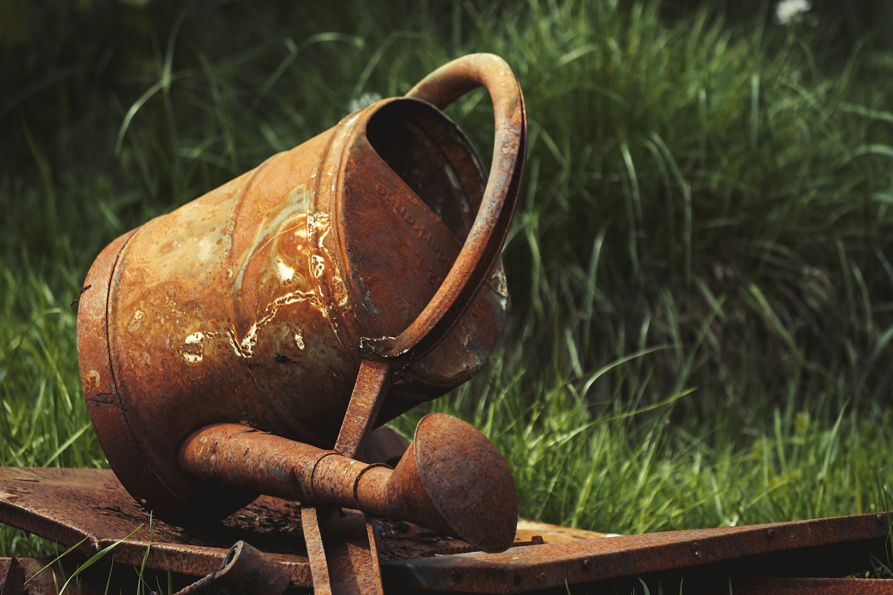 rusty old watering can in grass