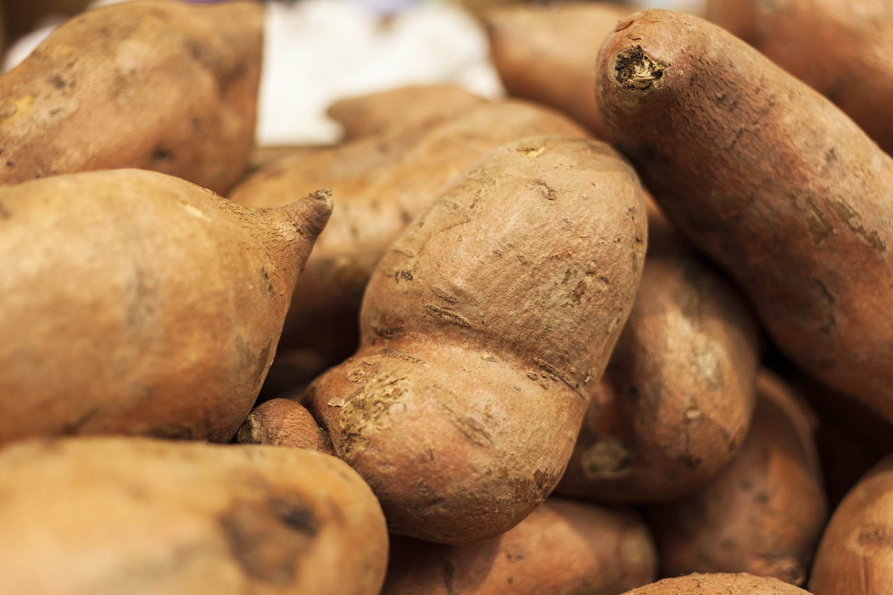 Organic Raw Sweet Potatoes from the market