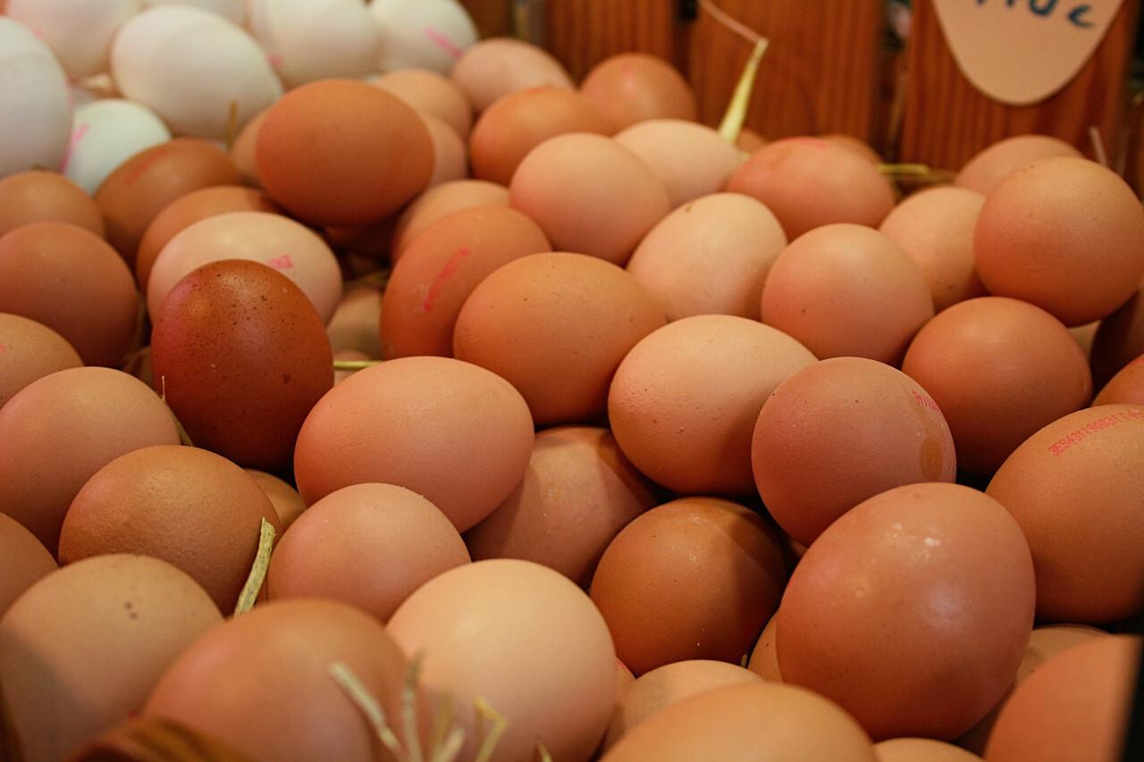 eggs market