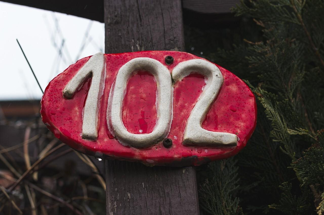 number 102