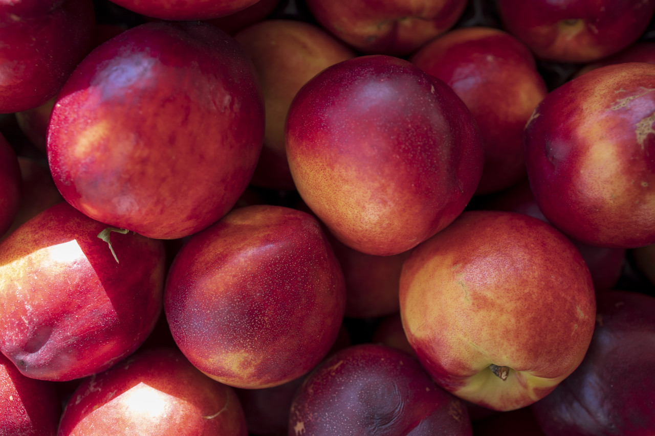 red peaches background - on the market