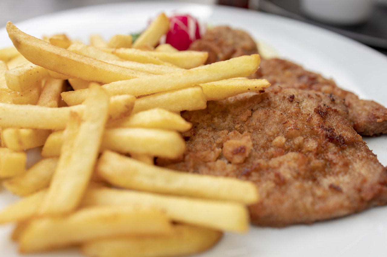 Wiener Schnitzel with French fries and a side salad