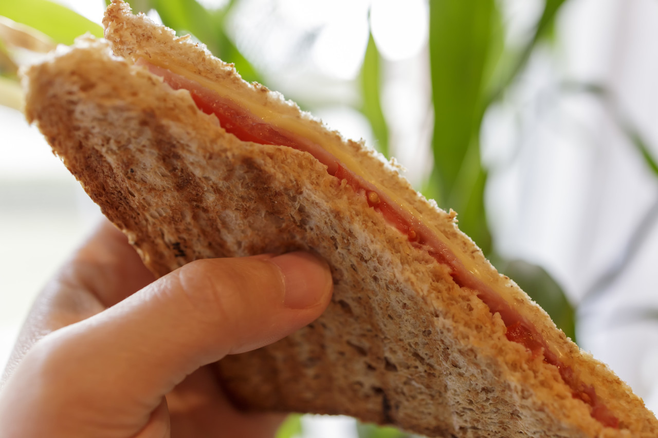 Sandwich Toast in a Hand