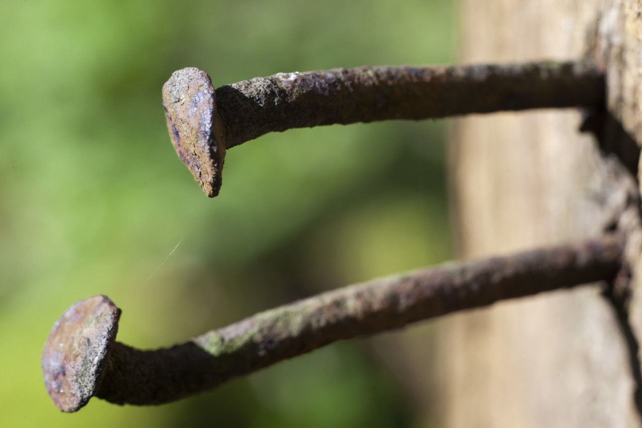 Macro Close up shot of Rusty Nails