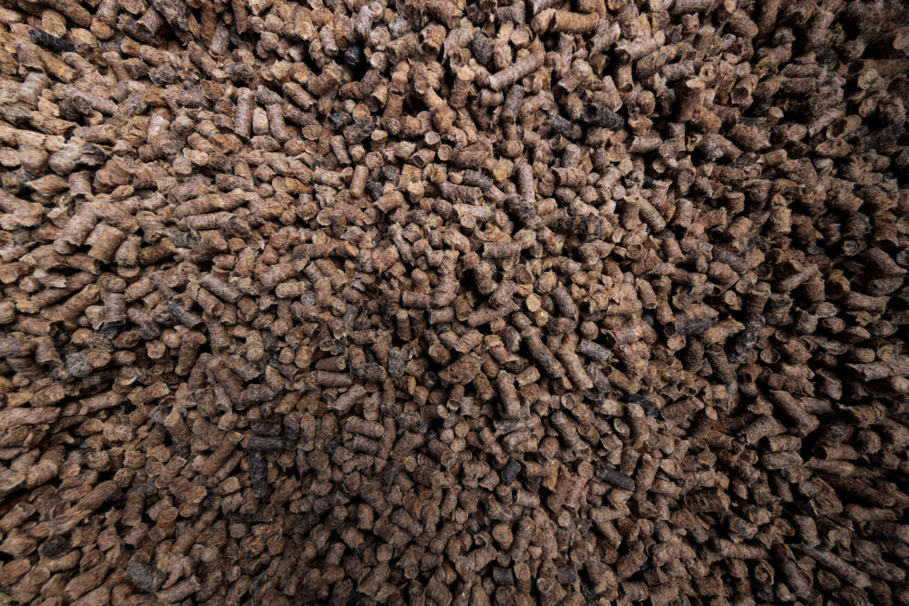 Sheep wool fertilizer pellets
