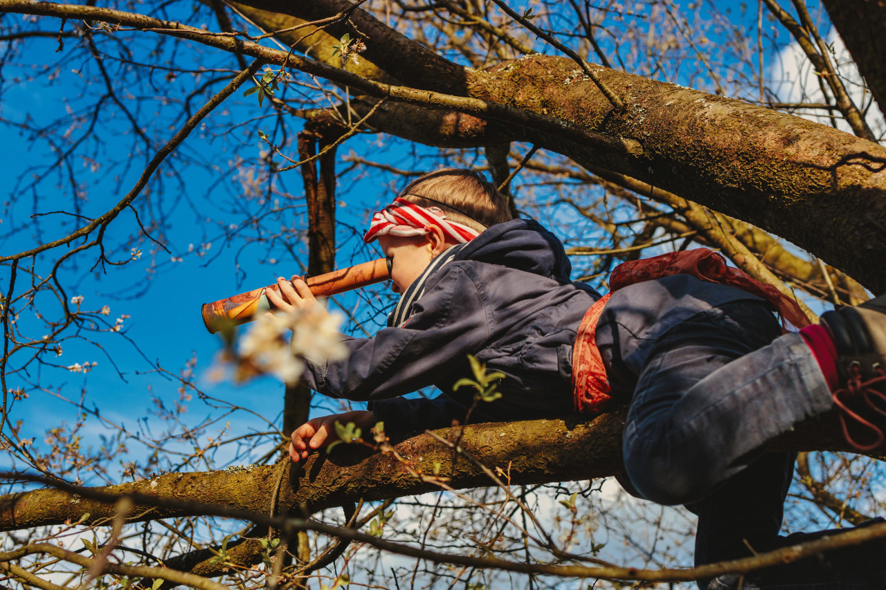 Little boy on a tree looks through binoculars dressed as a pirate