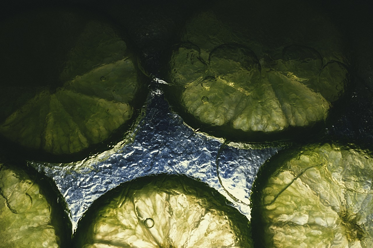 Lime slices in the ice
