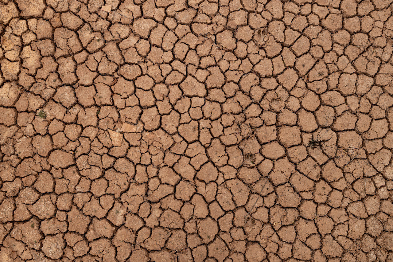 Cracks in the ground due to drought