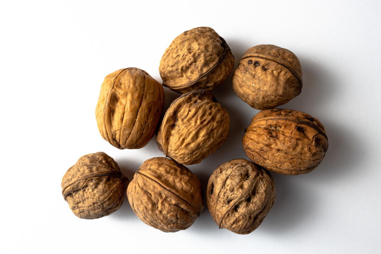 Walnuts white background