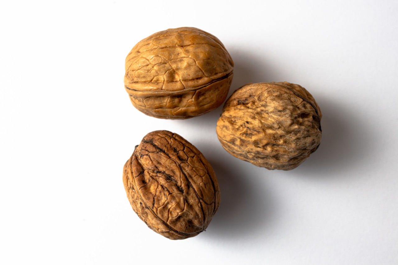 Three walnuts white background