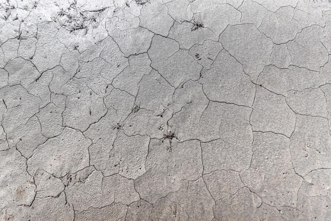 dry ground with cracks background