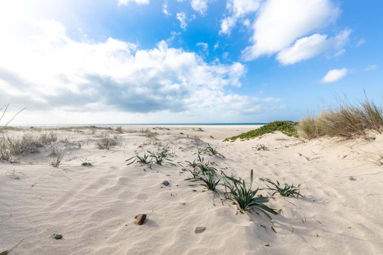 White sand beach in tarifa spain