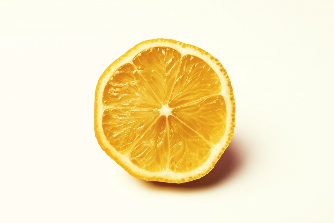 lemon slice white background