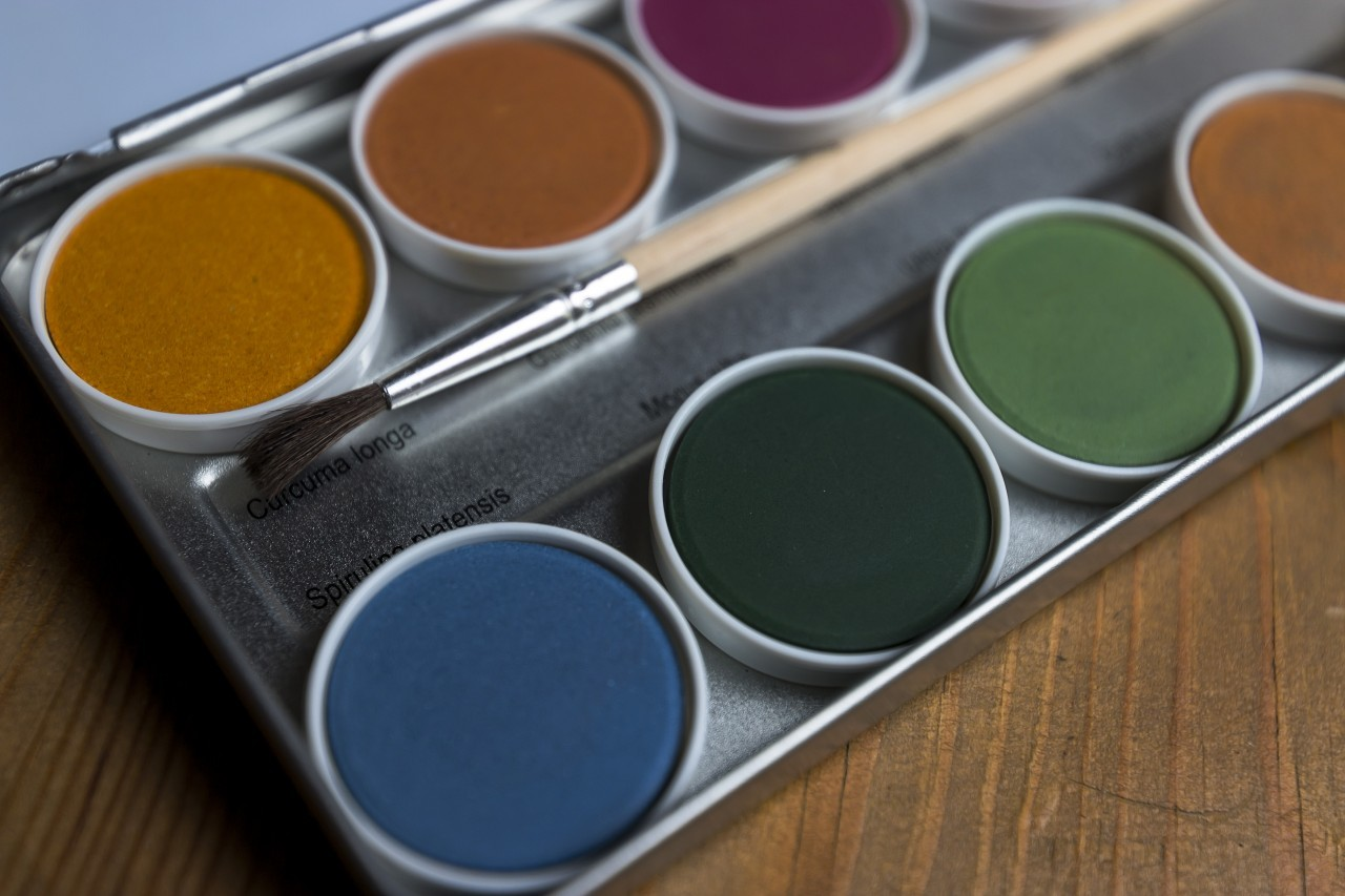 Artist's watercolour palette with brush