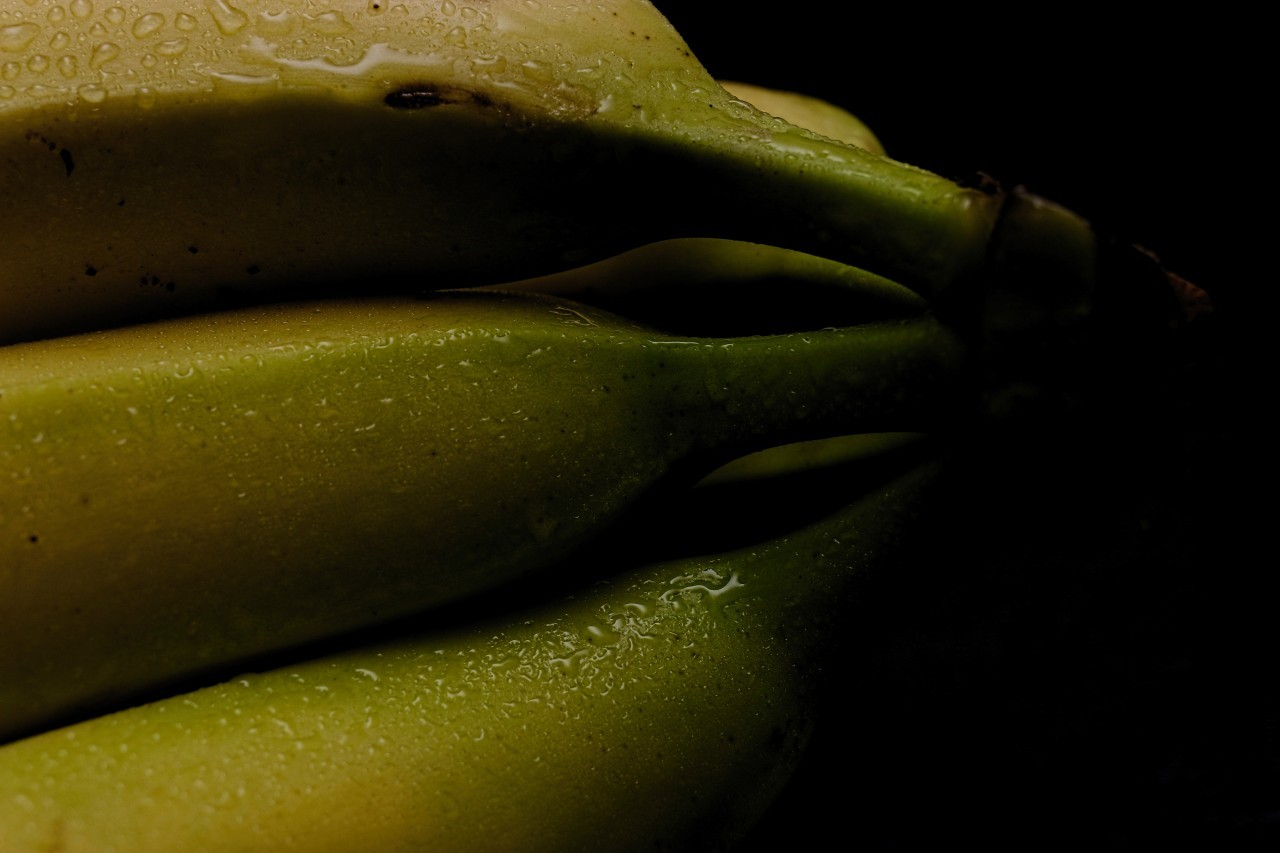bananas wet black background