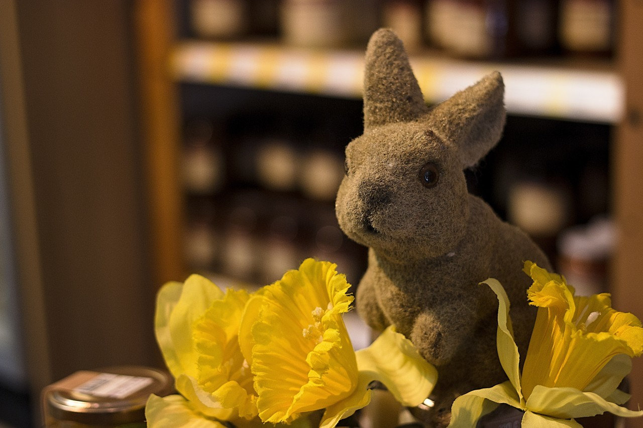 spring easter decoration bunny and flowers
