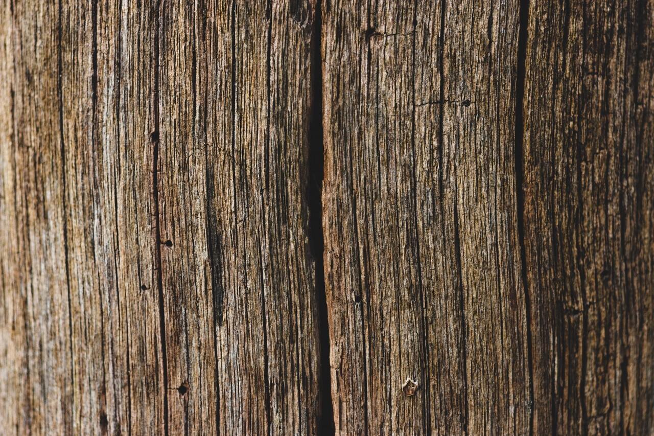 decorative grunge wood grain texture background