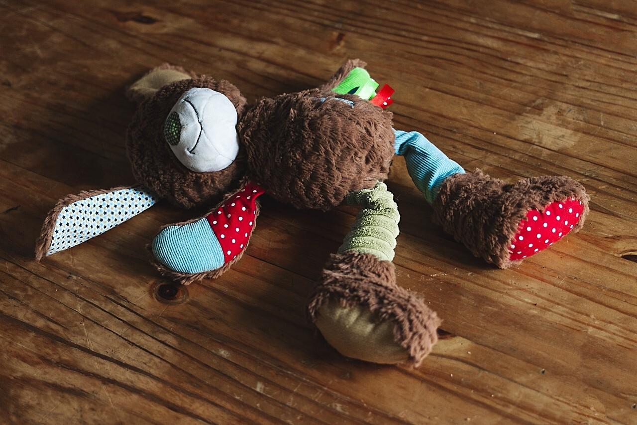 colorful plush teddy