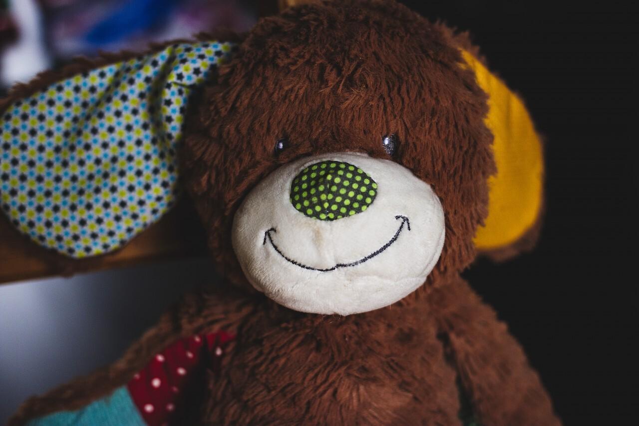 colorful plush teddy portrait