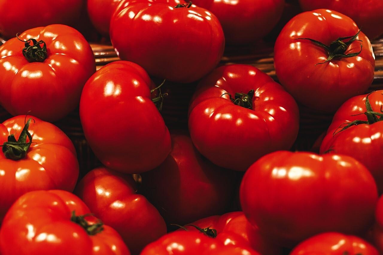Very Nice Organic Ripe tomatoes