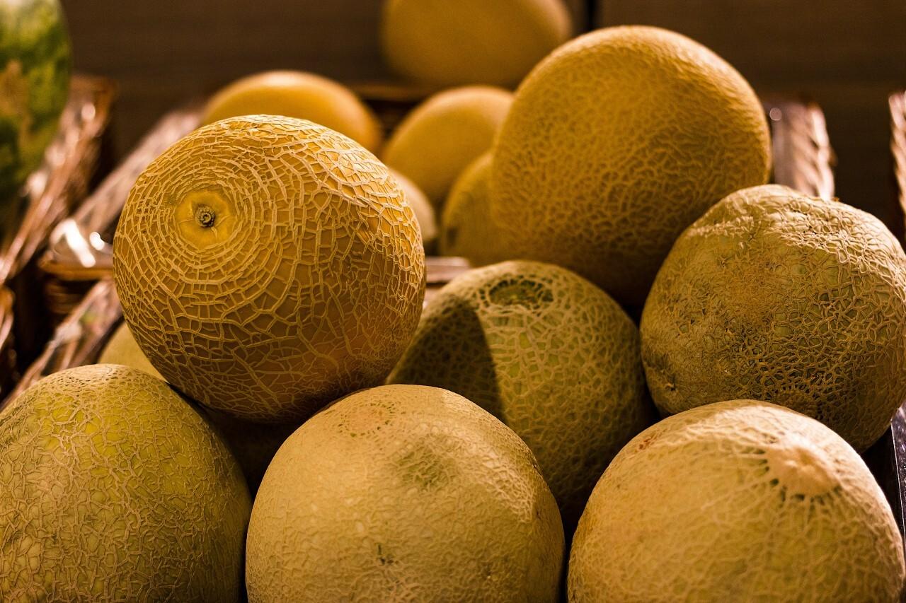 melon market