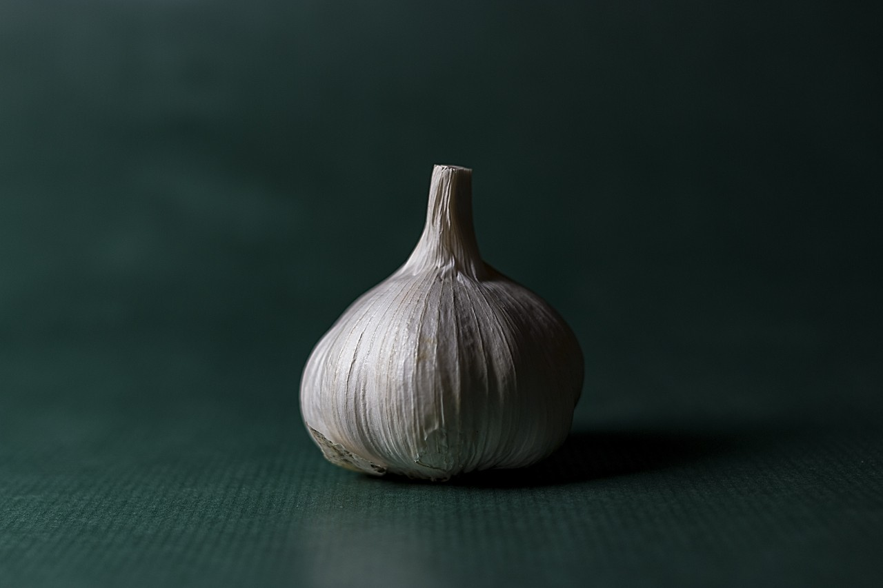Closeup garlic on green background