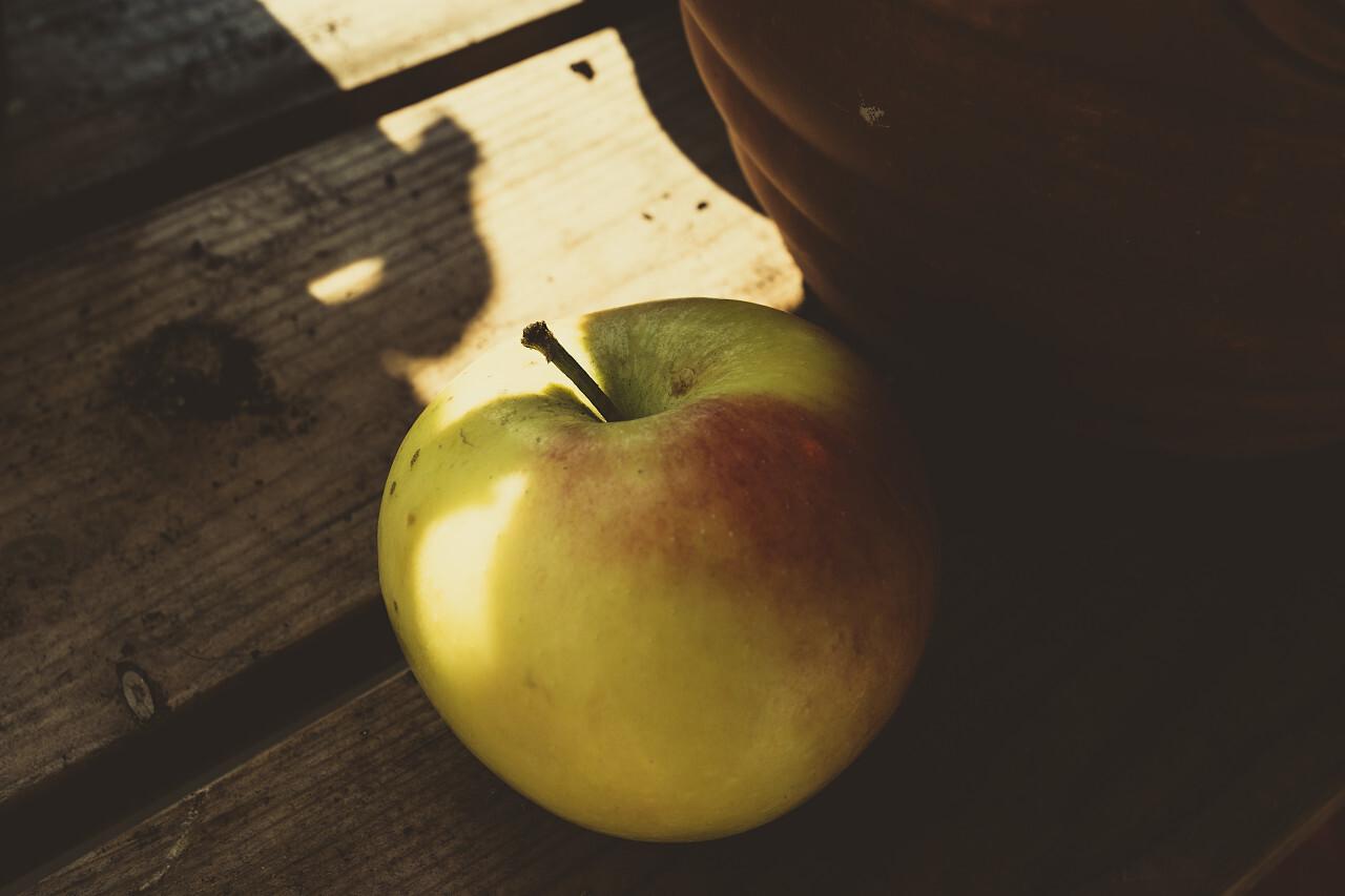 apple on a garden table