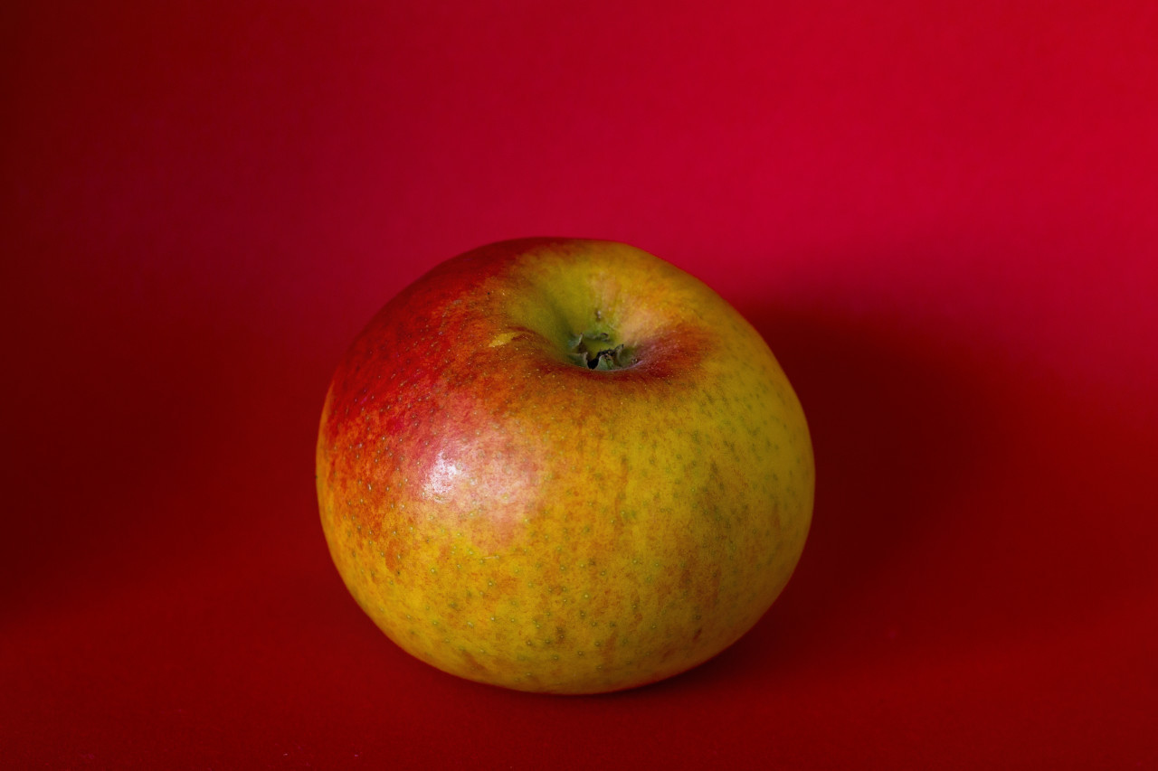 greenish red apple on a red background