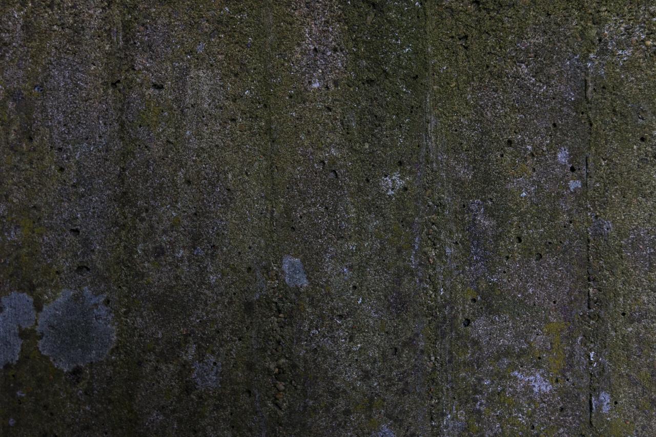 mossy concrete stone texture