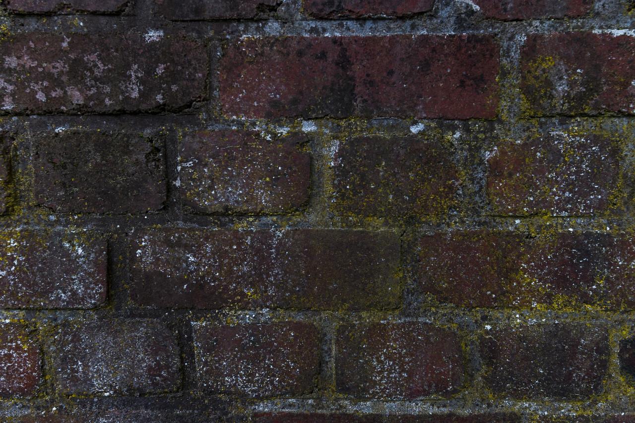 old brick wall texture 02