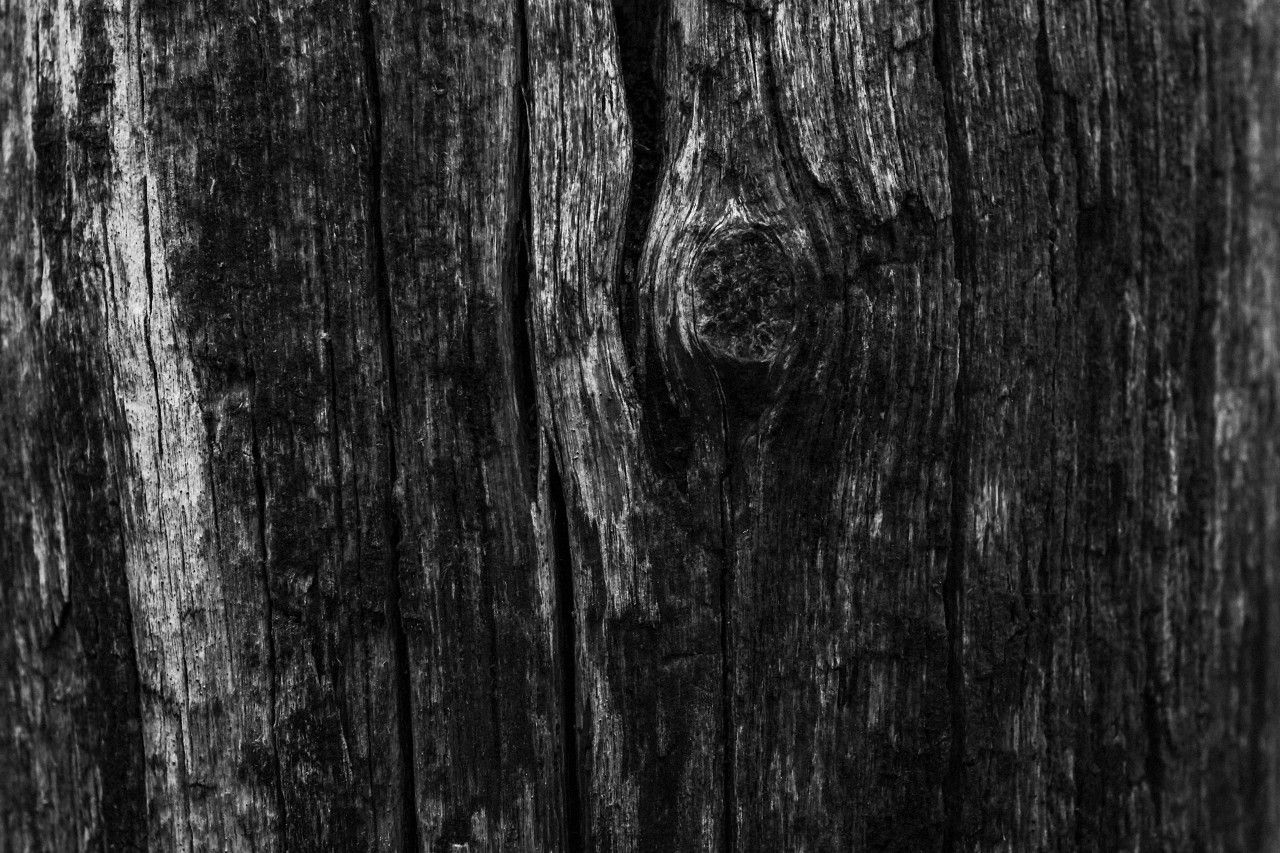 woodtexture blacknwhite