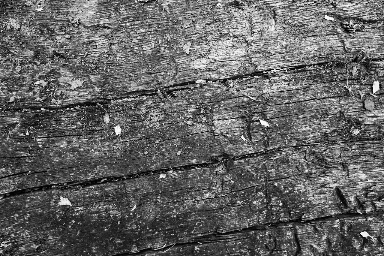 cracked wood texture blacknwhite