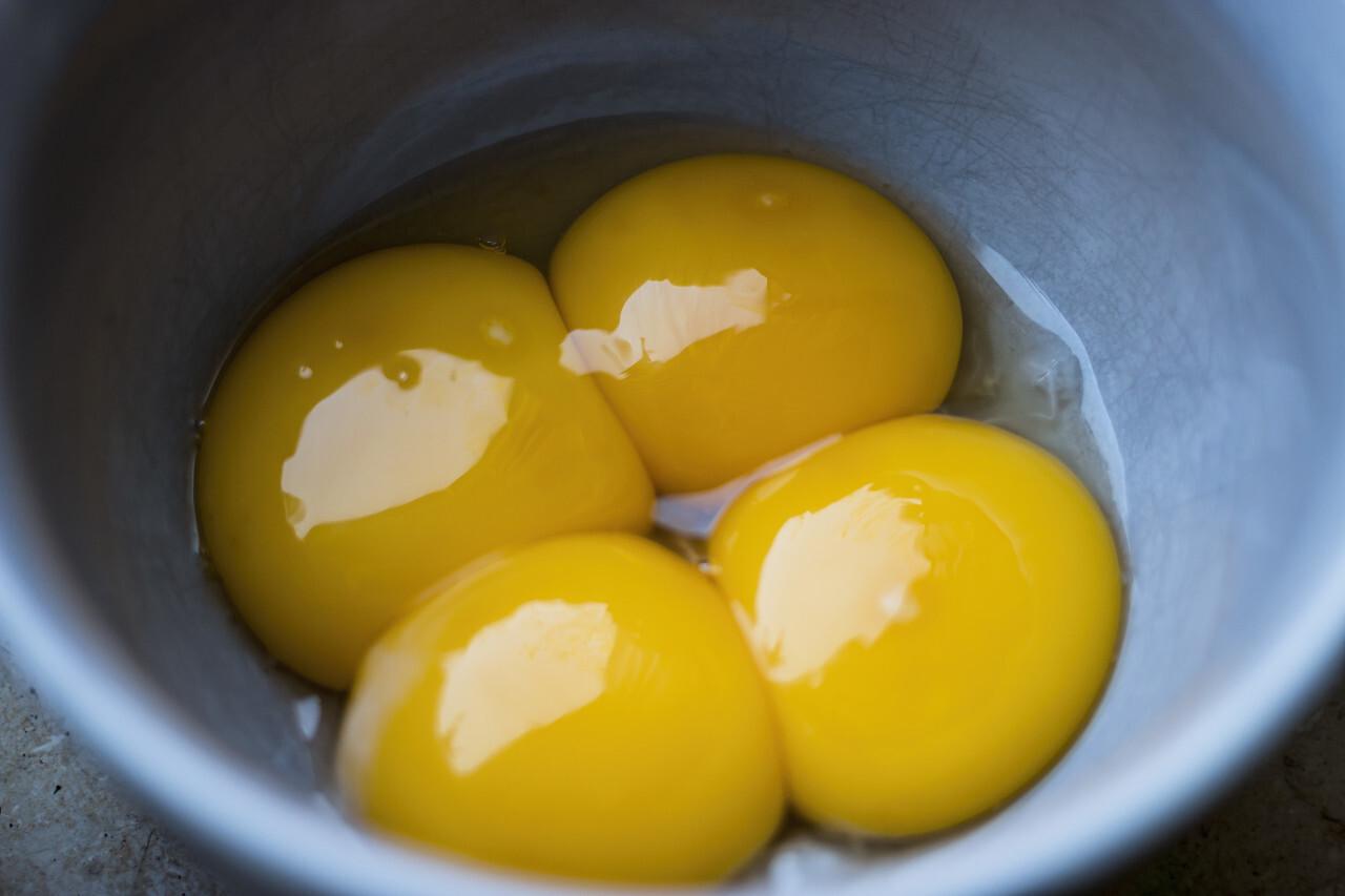 egg yolk in a bowl
